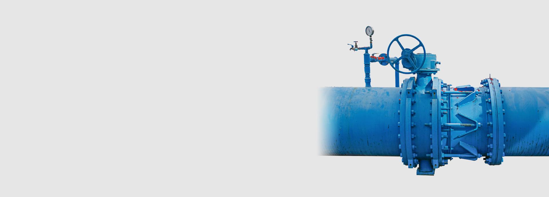 DIN & ANSI Standard gate valves